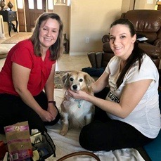 Acupuncture and Holistic Veterinary Services- image of Dr. Amy and Sarah performing acupuncture on a blonde and white dog