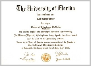 Acupuncture and Holistic Veterinary Services - image Dr. Amy Van Dyke's diploma for Veterinarian Medicine